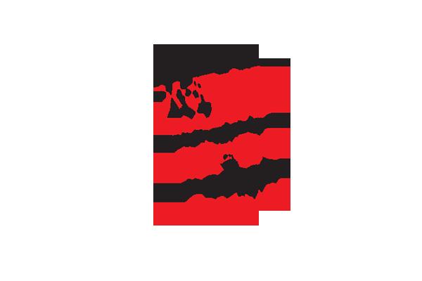 Markus Steiger Project 01770  Logo Buchmesse Schweizerschule São Paulo