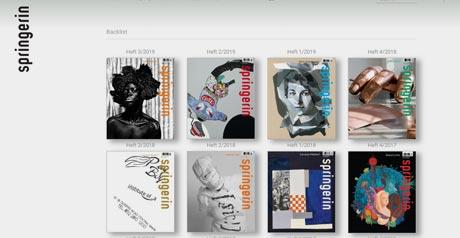 Screenshot Site Springerin