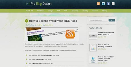 Screenshot Site How to Edit the WordPress RSS Feed